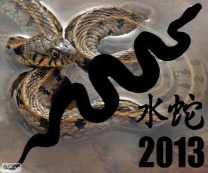 2013, dem Jahr der Wasser-Schlange. Nach dem chinesischen Kalender, aus dem 10. Februar 2013 bis 30. Januar 2014 puzzle