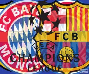 2a Semi Champions 14-15 puzzle