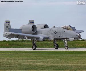 A-10A Thunderbolt II puzzle