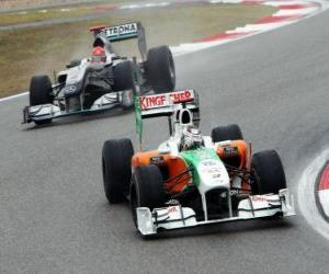 Adrian Sutil - Force India - Shanghai 2010 puzzle