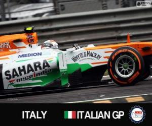 Adrian Sutil - Force India - Monza, 2013 puzzle