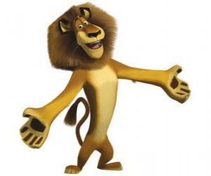 Alex, der Löwe dem New Yorker Zootiere, mit offenen armen puzzle