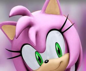 Amy Rose ist eine rosa Igel mit grünen Augen, ist verliebt in Sonic puzzle