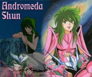 Andromeda Shun, die Bronze-heilige von Andromeda constellation puzzle