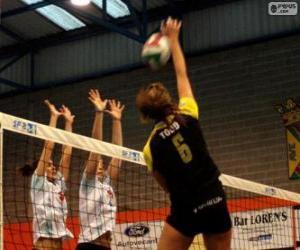 Angriffe auf das Netzwerk und die Verteidigung versuchen, in einer Partie Volleyball-Block puzzle