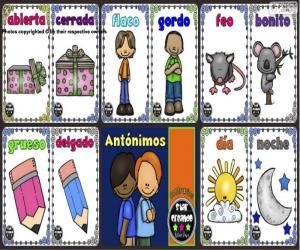 Antonyme puzzle