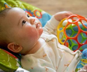 Baby auf der Suche puzzle