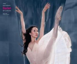 Ballett - Tänzer in aktion puzzle