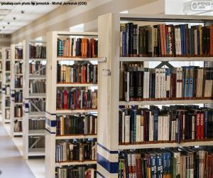 Bibliothek puzzle