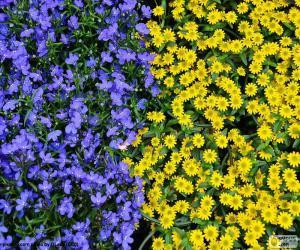 Blaue und gelbe Blumen puzzle