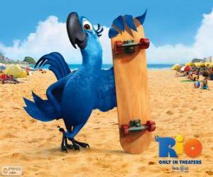 Blu ist ein Spaß Ara und die Hauptfigur des Films Rio puzzle