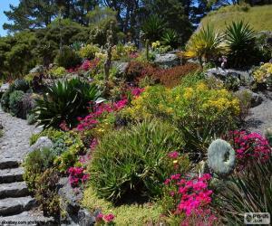 Botanischer Garten puzzle