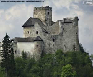 Burg Niedzica puzzle
