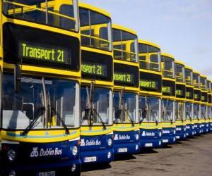 Busse von Dublin auf dem Parkplatz puzzle