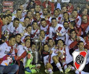Ca River Plate, Copa Libertadores 2015 puzzle