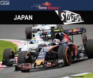 Carlos Sainz Jr., Großer Preis Japan 2016 puzzle