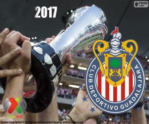 C.D. Guadalajara, Clausura 2017 Meister puzzle