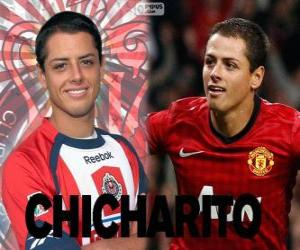 Chicharito puzzle