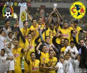 Club America, Meister des Turniers Clausura 2013, Mexiko puzzle