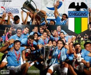 Club Deportivo O'Higgins, Chilenischer Meister Apertura 2013 puzzle