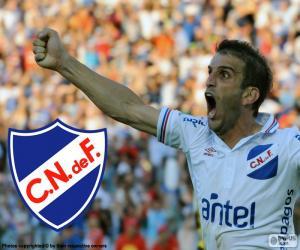 Club Nacional de Football, Meister 14-15 puzzle