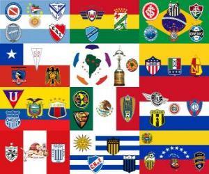 Copa Libertadores 2011 puzzle
