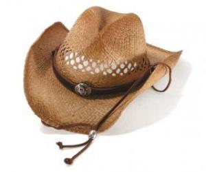 Cowboy-hut puzzle