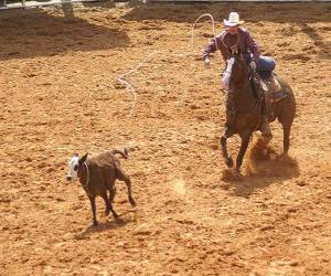 Cowboy reitet der ein pferd und einen kopf des viehs mit dem lasso sich verfängt puzzle