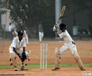 Cricket-Spieler puzzle