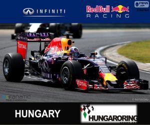 Daniel Ricciardo G. P von Ungarn 2015 puzzle