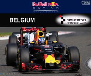 Daniel Ricciardo, GP Belgien 2016 puzzle