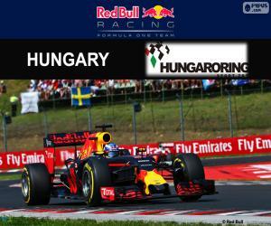 Daniel Ricciardo, GP Ungarn 2016 puzzle