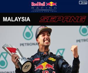 Daniel Ricciardo, GP von Malaysia 2016 puzzle