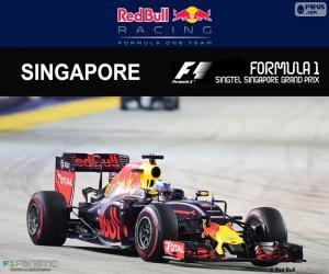 Daniel Ricciardo Großer Preis Singapur 2016 puzzle