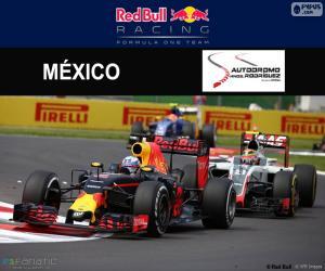 Daniel Ricciardo, Großer Preis Mexiko 2016 puzzle