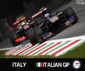 Daniel Ricciardo - Toro-Rosso - Monza, 2013 puzzle