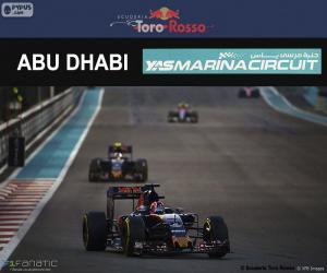 Daniil Kvyat, GP von Abu Dhabi 2016 puzzle