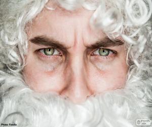 Das Gesicht des Weihnachtsmann puzzle
