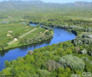Der Ebro, Tarragona puzzle