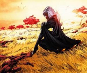 Der Super-Heldin Storm ist ein Mitglied der X-Men, die auch als Schwarzes Panther bekannt puzzle
