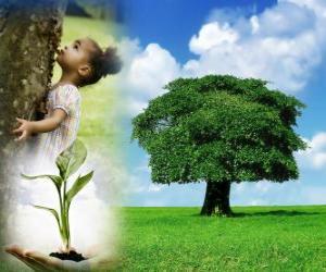 Der Tag des Baumes ist statt im 25 April in Deutchland. In anderen Ländern ist feiern in verschiedenen Zeitpunkten während der Pflanzsaison geeignet puzzle