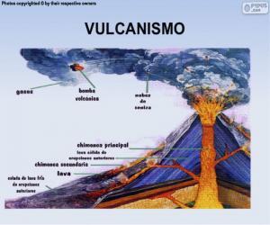 Der Vulkanismus puzzle