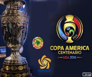 Die 2016 Copa América Centenario trophy puzzle
