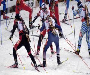 Die Biathlon in ein Wintersport der Kombination Langlauf mit Scheibenschießen. puzzle