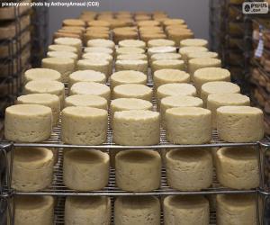 Die Heilung von Käse puzzle