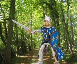 Die mutigen und schönen Prinzen mit seinem Schild und Schwert puzzle