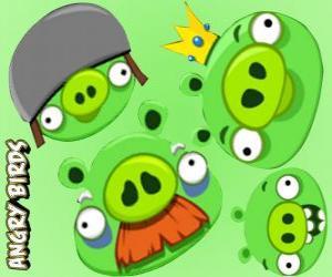 Die Schweine von Angry Birds puzzle