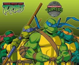 Die vier Ninja Turtles: Leonardo, Michelangelo, Donatello und Raphael. Teenage Mutant Hero Turtles oder TMNT puzzle