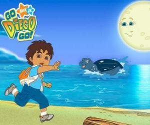 Diego am Strand und im Wasser eine Meeresschildkröte puzzle