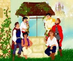 Disney Prinz puzzle